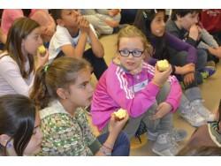 Agricultura demana la inclusió de la mel i l'oli en el programa europeu de suport de fruita i llet a les escoles.