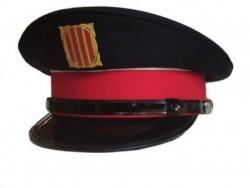 Detenen a l'Alt Urgell un home per un delicte contra la salut pública i un altre contra la seguretat del trànsit.