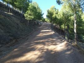 """La Diputació de Lleida i """"la Caixa"""" recuperen dos espais naturals a Alpicat i el Vilosell."""